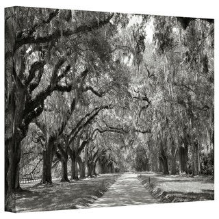 Steve Ainsworth 'Live Oak Avenue' Gallery-Wrapped Canvas