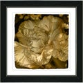 Studio Works Modern 'Sepia Carnation' Framed Print