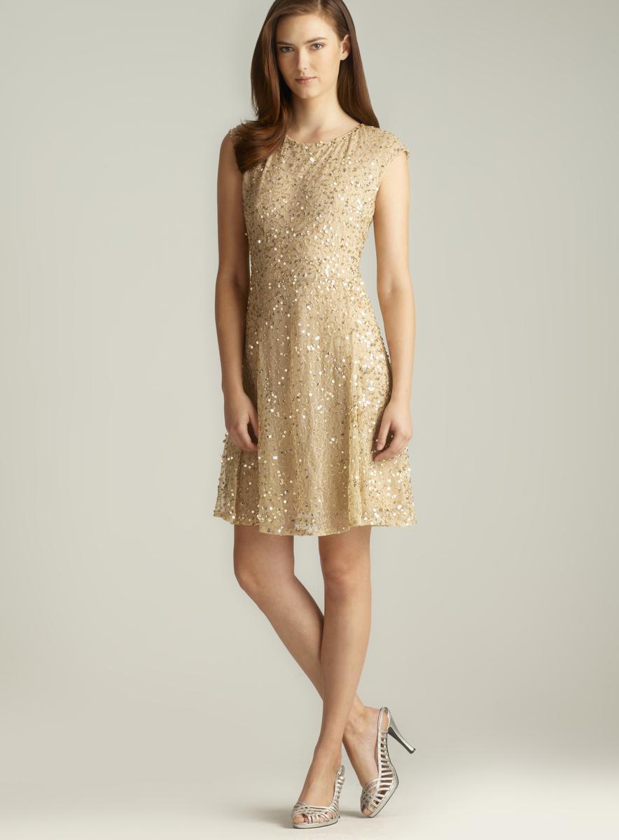 Pisarro Nights Zipper Back Sequined & Beaded A-Line Dress