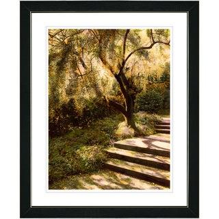 Studio Works Modern 'Tree with Steps' Framed Art Print