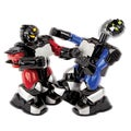 Remote Controlled Battle Boxing Robots (Set of 2)