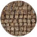 Nourison Modesto Distressed-pattern Beige Rug (5'3'' Round)