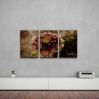 Alexis Bueno 'Floral' Abstract Canvas Wall Art (3-piece)