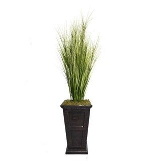 """Laura Ashley 79"""" Tall Onion Grass with Twigs in 16"""" Fiberstone Planter"""