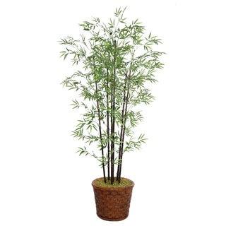 Laura Ashley 77-inch Tall Black Bamboo Tree Fiberstone Planter