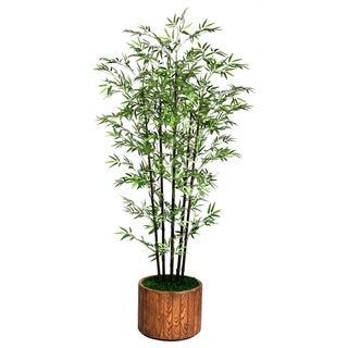 "Laura Ashley 77"" Tall Black Bamboo Tree in 16"" Fiberstone Planter"
