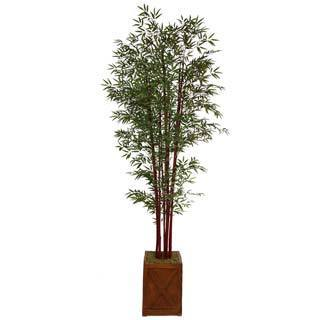 "Laura Ashley 101"" Tall Harvest Bamboo Tree in 13"" Fiberstone Planter"