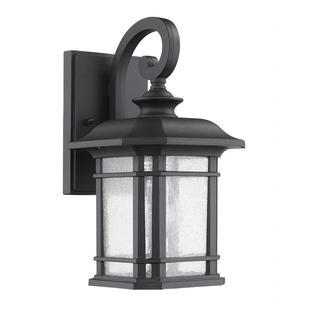 Transitonal 1-light Black Outdoor Wall Light Fixture