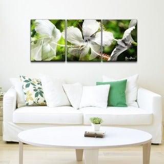 Alexis Bueno 'White Floral Study' 3-piece Canvas Wall Art