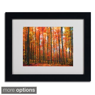 Philippe Sainte-Laudy 'Dominated' Framed Matted Art