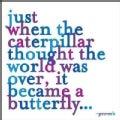 Just When the Caterpillar Journal (Notebook / blank book)