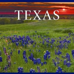 Texas (Hardcover)