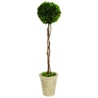 Sage & Co Single Ball 29-inch Boxwood Topiary