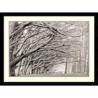 Chris Honeysett 'Crystal Grove' Framed Art Print 43 x 32-inch