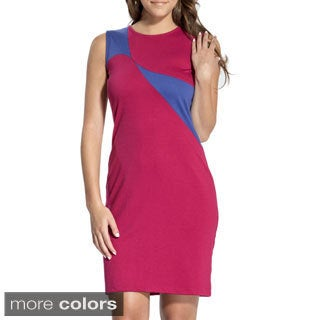 Amelia Women's Sleeveless Colorblocked Sheath Dress