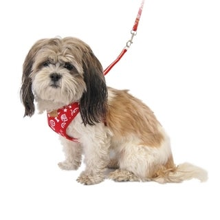 Comfort Soft Pet Dog Puppy Leash Lead With Mesh Harness Girth Vest
