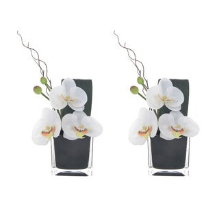 White Artificial Silk Phalaenopsis Orchid Arrangements in Black Glass Base (Set of 2)