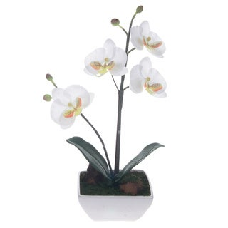 White Artificial Silk Phalaenopsis Orchid Centerpiece with White Square Base