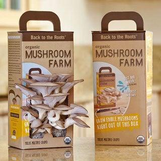 Back to the Roots Mushroom Farm