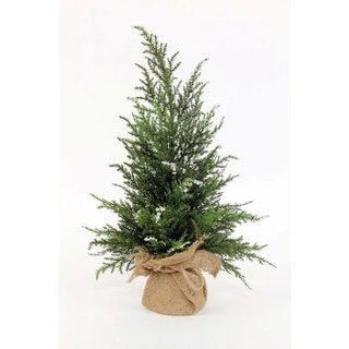 Sage & Co 8-inch x 8-inch x 16-inch Mini Cedar Tree In Burlap (Pack of 6)