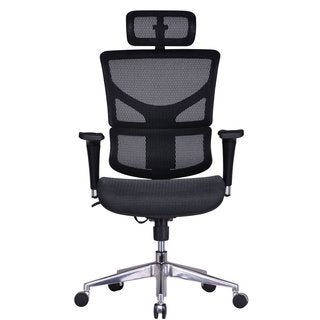 GM Seating ErgoHuman Chrome Base Executive Ergonomic Chair with Headrest