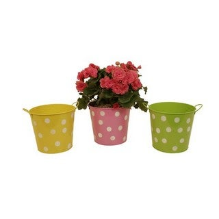 Assorted 7-inch Metal Polka Dot Container (Set of 3)