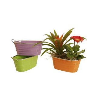 Assorted 9-inch Oblong Painted Metal Container (Set of 3)