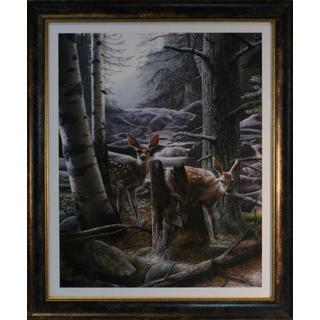 Kevin Daniel 'White Tail Fawn' Framed Print
