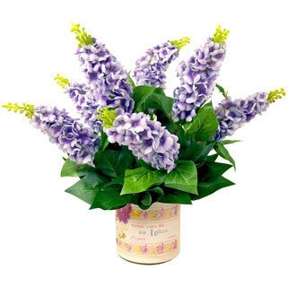 Creative Displays Wild Lavender in French Label Container