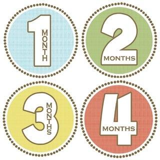Rocket Bug Seaside Monthly Baby Bodysuit Stickers