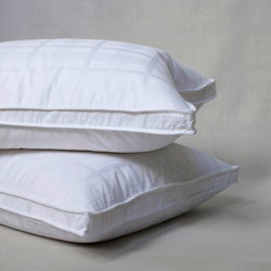 Extra Firm Goose Feather Standard-size Pillows (Set of 2)