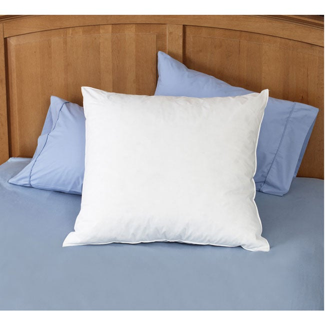 Natural Euro Square Pillows (Set of 2)