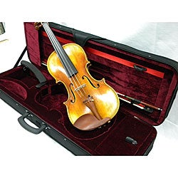 Artist  500  Series Concert Violin, Case and Accessory Package