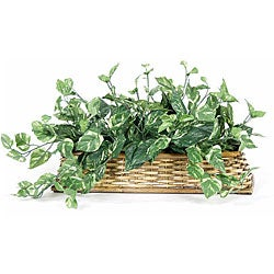 Rattan Pothos 13-inch Silk Plant (Pack of 2)