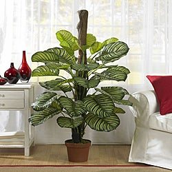 53 in Calathea Silk Plant (Real Touch)