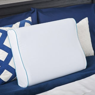 Priage MyGel Memory Foam Contour Pillow with Cover