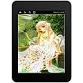 Velocity T301RB 7-inch Micro Cruz 4GB Wi-Fi Tablet (Refurbished)