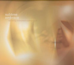 Sublime Embrace: Experiencing Consciousness in Contemporaray Art (Paperback)