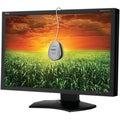 "NEC Display MultiSync P241W 24"" CCFL LCD Monitor - 16:10 - 8 ms"