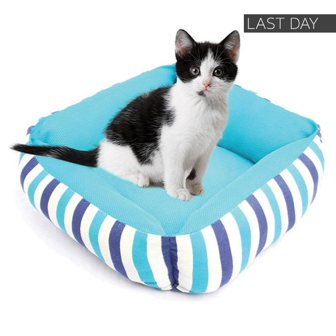 Last Day - Up to 40% off + Extra 10% off Select Pet Supplies*