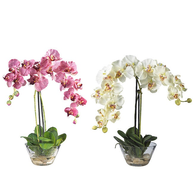 Phalaenopsis silk flower arrangement with glass vase ebay phalaenopsis silk flower arrangement with glass vase mightylinksfo