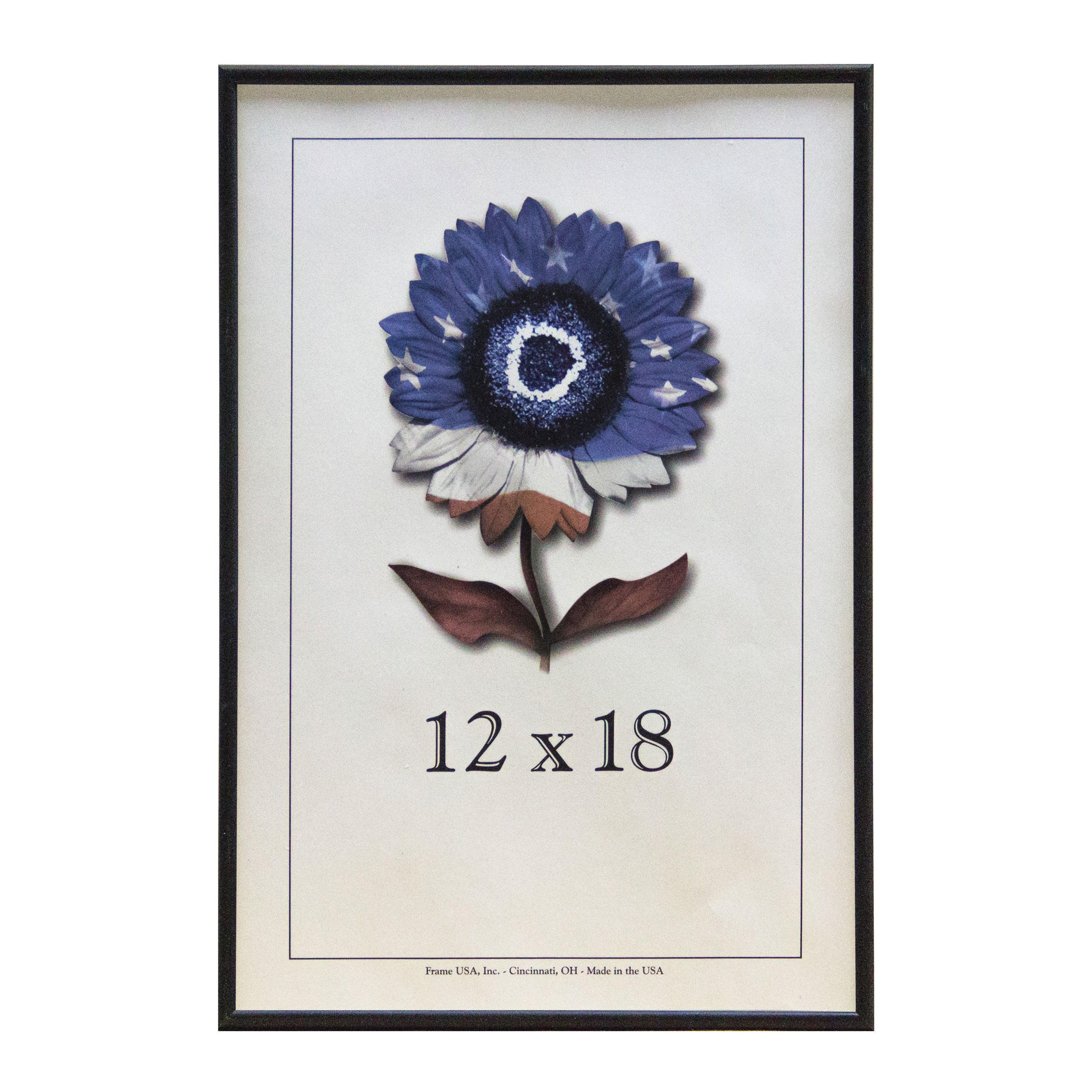 12 X 18 Metal Picture Frame Series 2 Black | eBay
