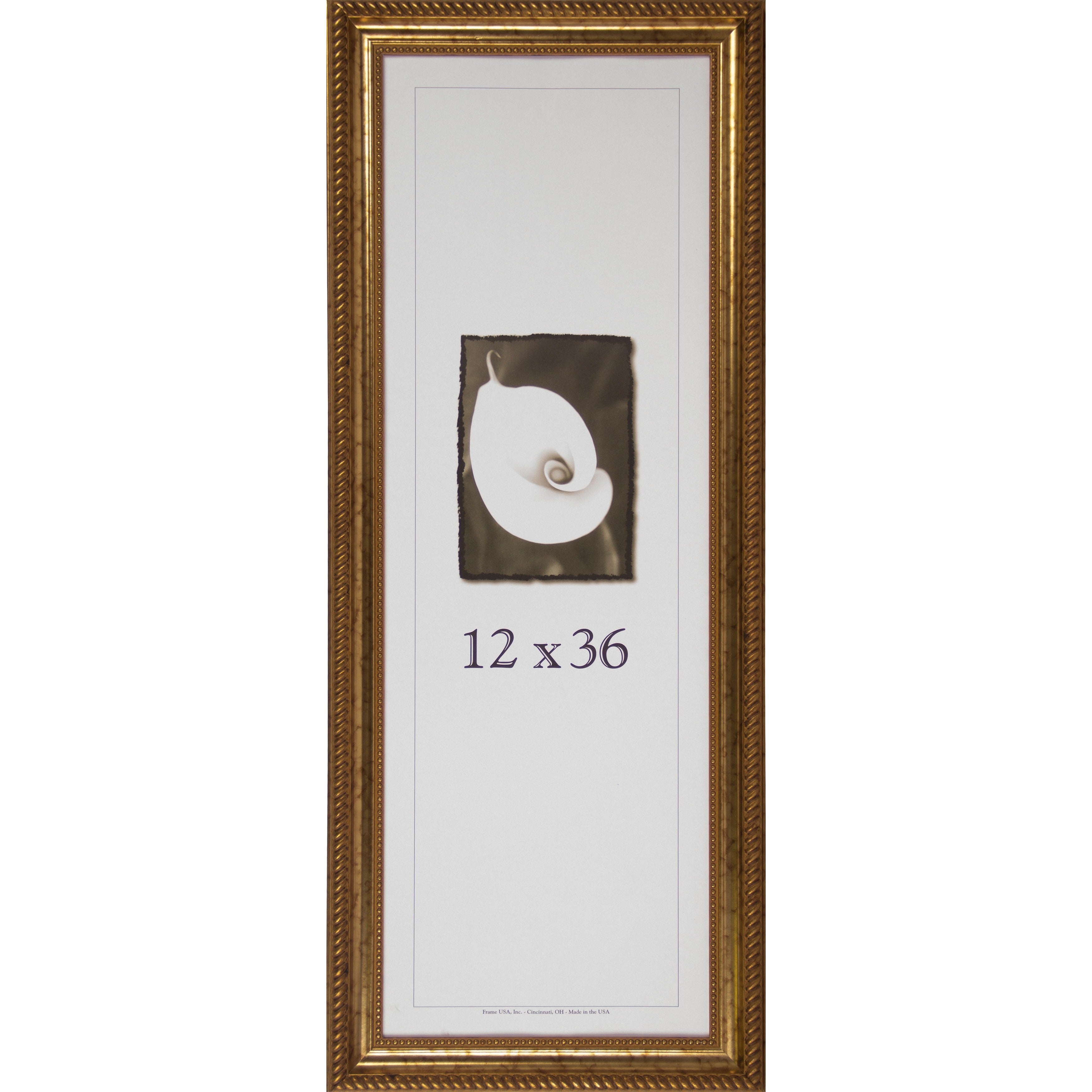 Napoleon Picture Frame (12 X 36-inch Image Size) Antique Gold 12x36 ...